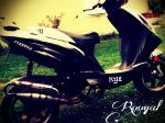 rooyal
